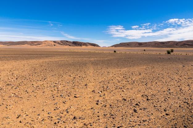 Stenen in de sahara woestijn Premium Foto