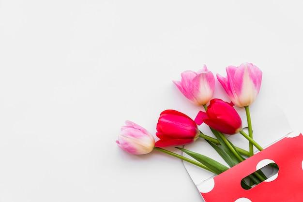 Stilleven met bloem in envelop op witte achtergrond Gratis Foto