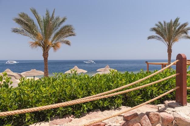 Strand bij het luxehotel, sharm el sheikh, egypte Gratis Foto
