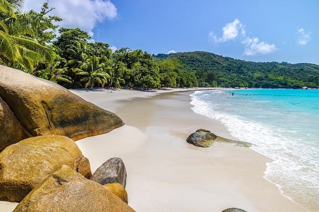 Strand omgeven door de zee en groen onder het zonlicht en een blauwe lucht in praslin op de seychellen Gratis Foto