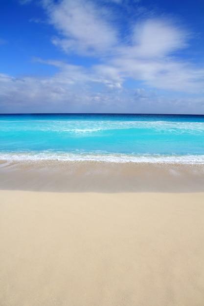 Strand tropische verticale caraïbische turkooise overzees Premium Foto