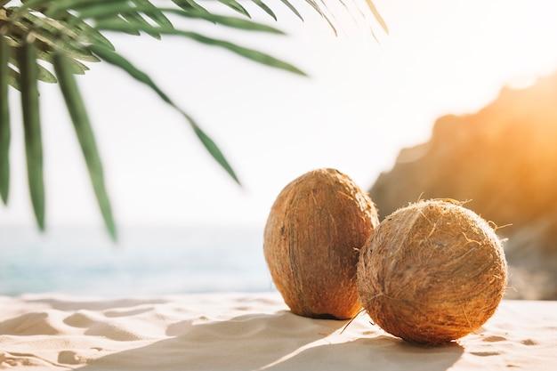 Strandachtergrond met kokosnoten Gratis Foto