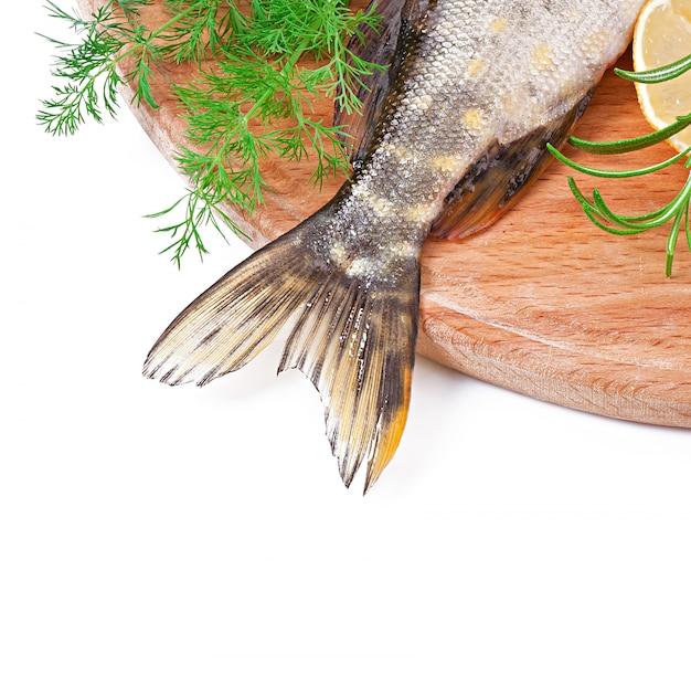 Stuk verse rauwe vis in kom Gratis Foto