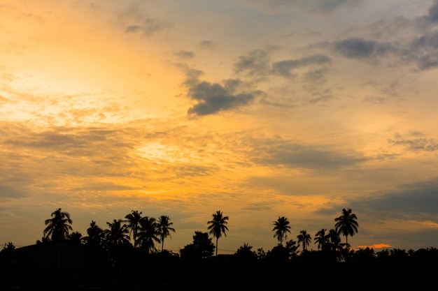 Sunset hemelachtergrond Premium Foto