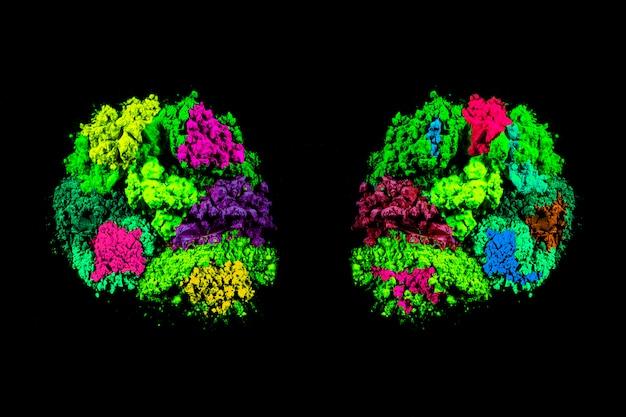 Symmetrie van de kleurrijke kleuren van het holipoeder over zwarte achtergrond Gratis Foto