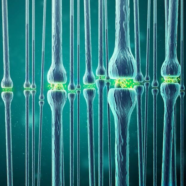 Synaptische transmissie, menselijk zenuwstelsel. 3d-weergave Premium Foto