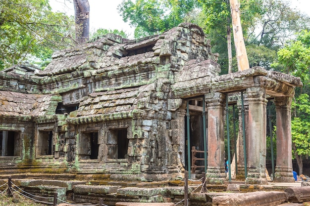 Ta prohm tempelruïnes in angkor wat in siem reap, cambodja Premium Foto