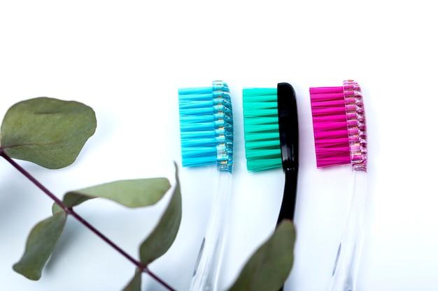 Tandenborstels op een witte tafel zijn gerangschikt in een rij en eucalyptus. Premium Foto