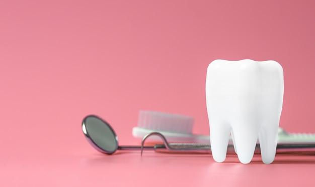 Tandmodel en tandmateriaal op roze Premium Foto
