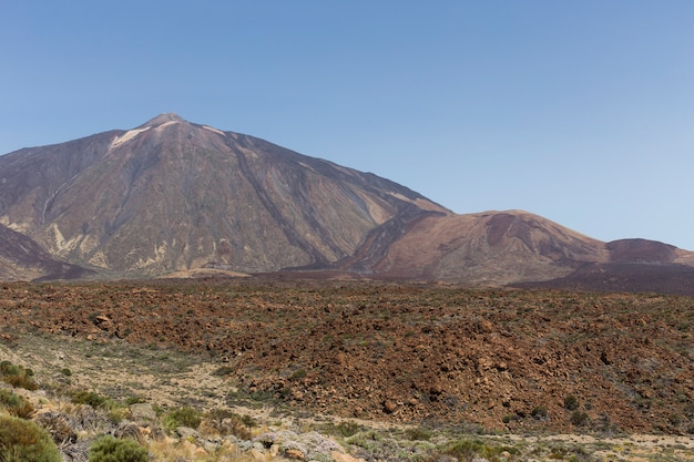 Teide vulkaan nationaal park, tenerife. Premium Foto