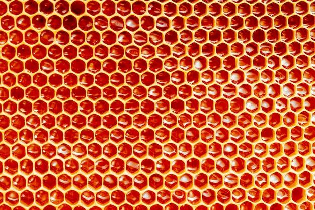 Textuur en patroon van een sectie van washoningraat van een bijenkorf gevuld met gouden honing Premium Foto