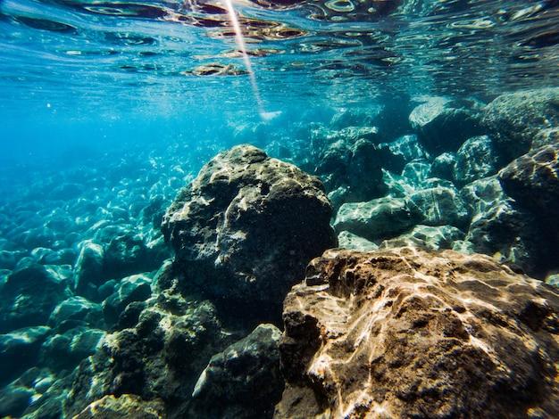 Textuur van stenen, aarde, zeebodem met koraalriffen en algen onder blauwgroen water Premium Foto