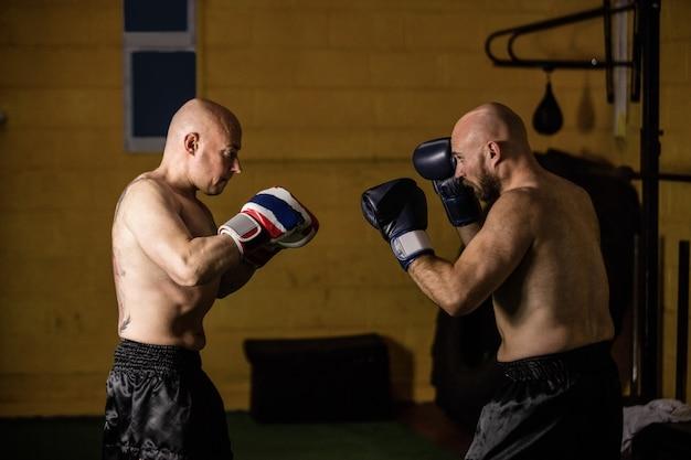 Thaise boksers oefenen boksen Gratis Foto