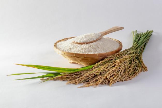 Thaise jasmijnrijst in een mand en geïsoleerde rijst op een witte achtergrond Premium Foto