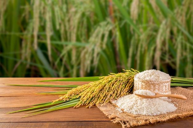 Thaise witte rijst (jasmijnrijst) Premium Foto