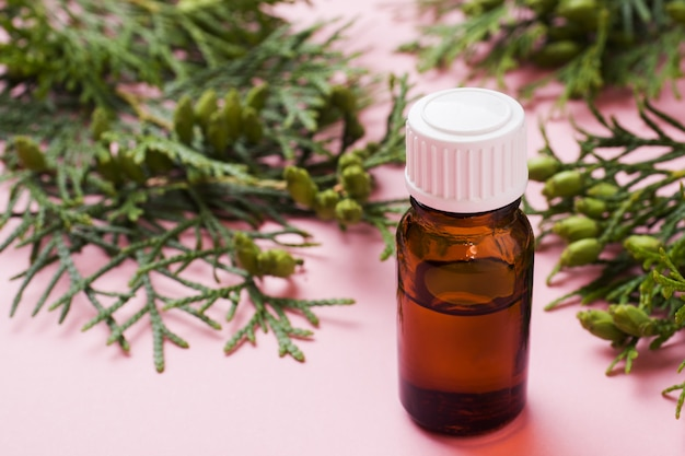 Thuja aroma etherische olie in een glazen pot op een roze oppervlak Premium Foto