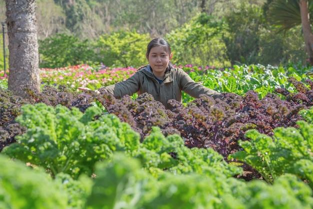 Tiener in hydroponic tuin tijdens het voedselachtergrond van de ochtendtijd Gratis Foto