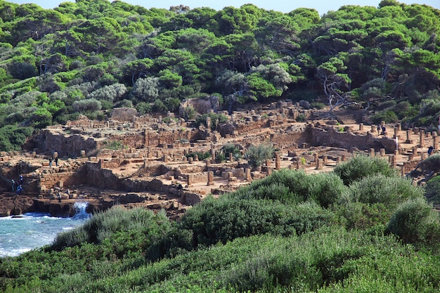 Tipaza romeinse ruïnes van steen en zand in algerije, afrika Premium Foto