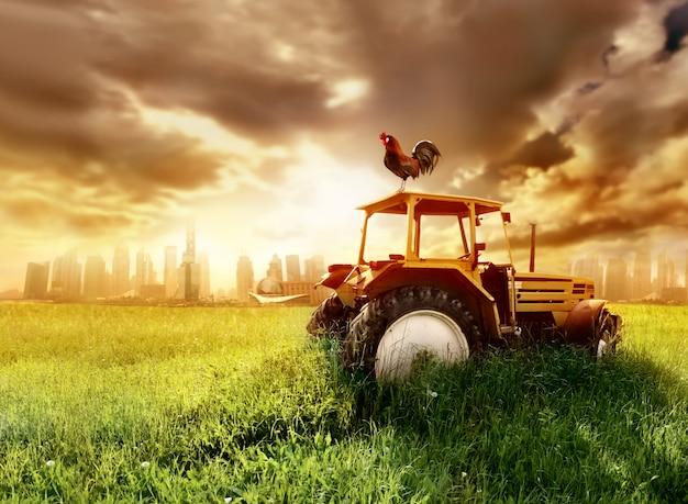 Tractor op een veld Premium Foto