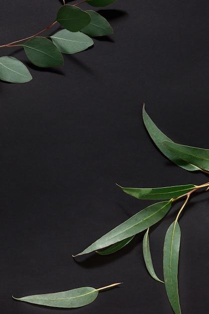 Trendy levensstijl met groene bladeren versierd op de tafel Gratis Foto