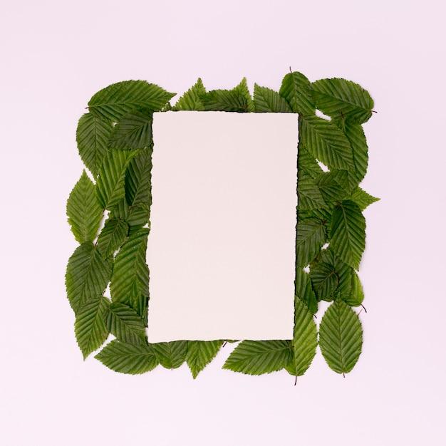 Tropisch botanisch frame met kopie ruimte Gratis Foto