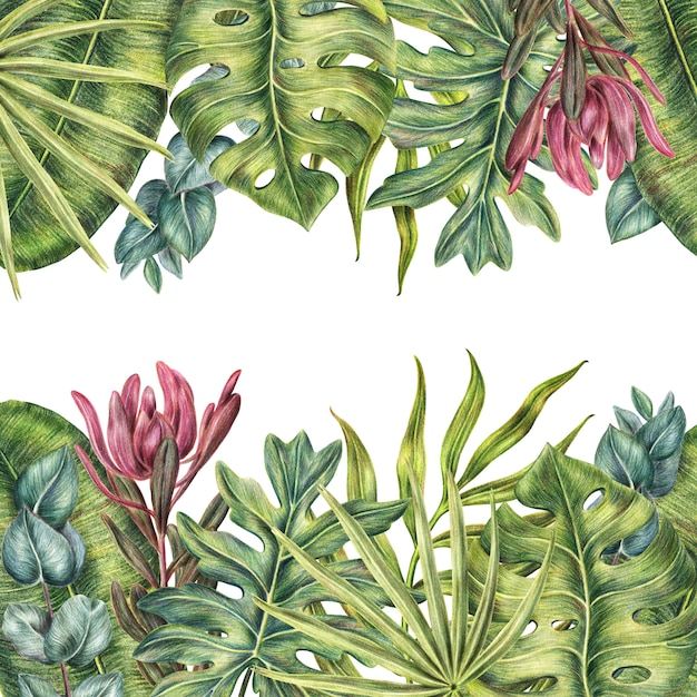 Tropisch kader met palmenbladeren, bovenkant en bodemachtergrond Premium Foto