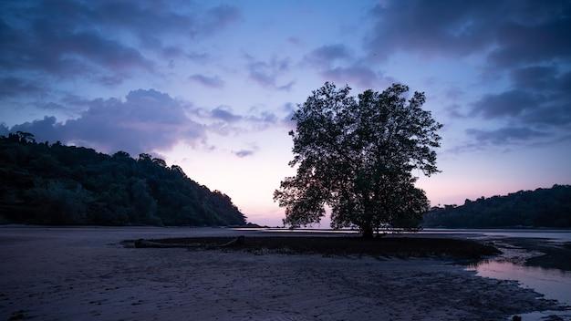 Tropisch overzees eiland in de avond Premium Foto