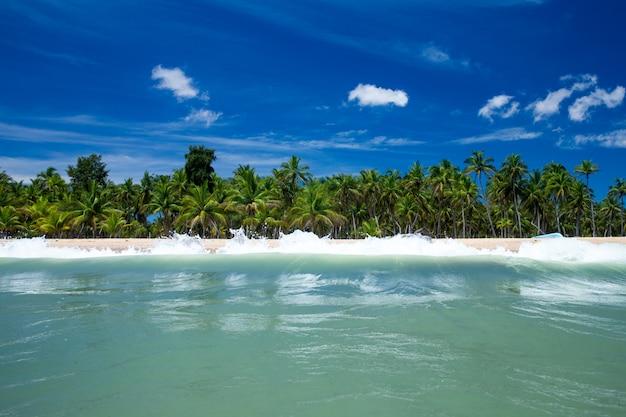 Tropisch strand in sri lanka. zomervakantie en vakantieconcept voor toerisme. Premium Foto