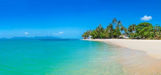 Tropisch strand op samui Premium Foto