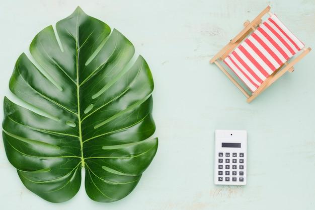 Tropische plant en rekenmachine Gratis Foto