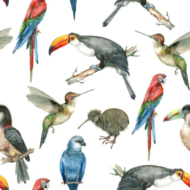 Tropische vogel aquarel patroon Premium Foto