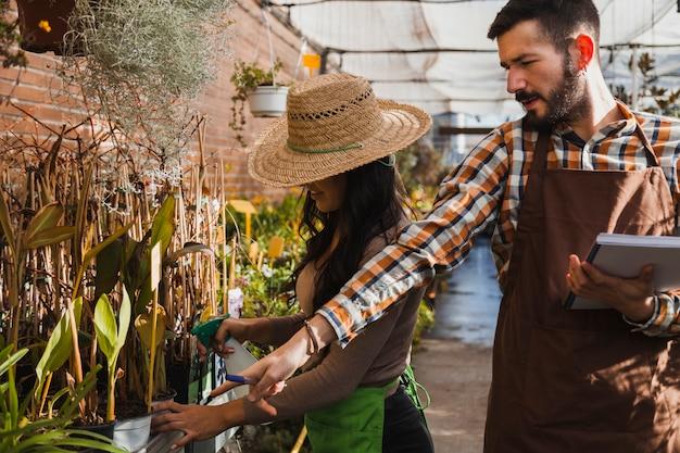 Tuinders sproeien planten Gratis Foto