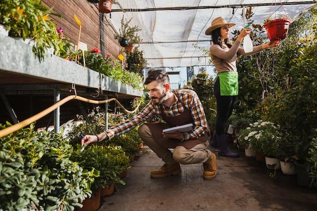 Tuinlieden die in serre werken Gratis Foto