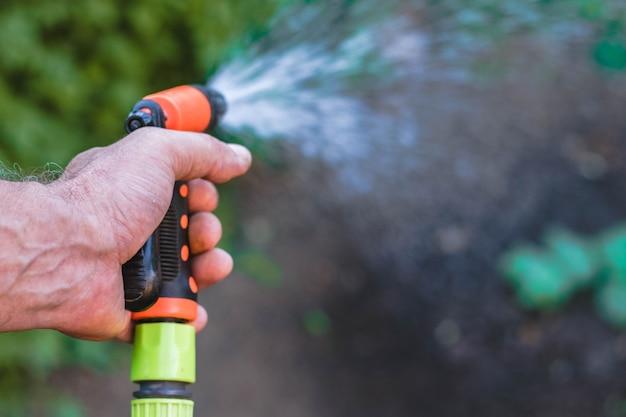 Tuinman hand water geven zomeroogst. slangsproeier. close-up van watersproeier. groene planten. Premium Foto