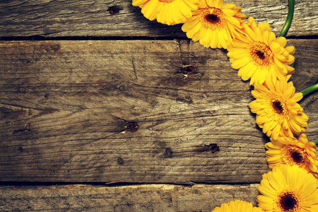 Tuinseizoen bloem achtergrond houten grens Gratis Foto