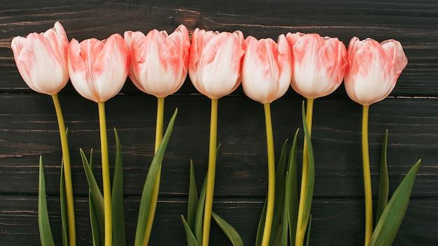 Tulp bloemen verspreid over houten tafel Gratis Foto