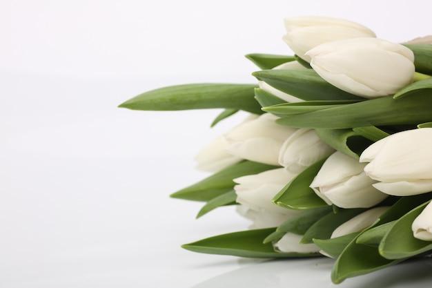 Tulpen bloem boeket valentijnsdag kaart concept Premium Foto