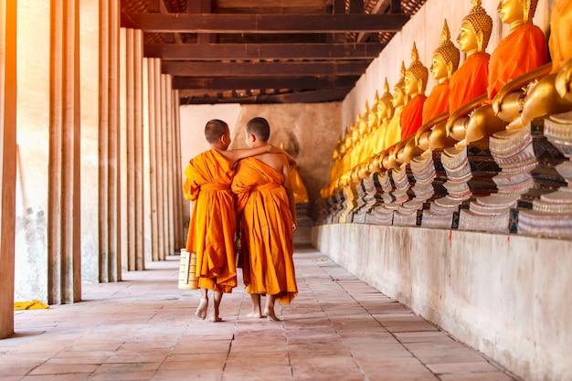 Twee beginners die en in oude tempel bij ayutthaya-provincie, thailand lopen spreken Premium Foto