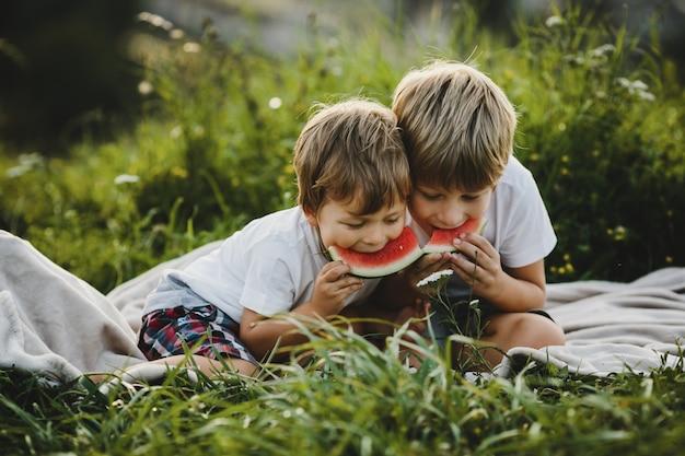 Twee kleine broers hebben plezier liggend op een groen veld in de stralen Gratis Foto