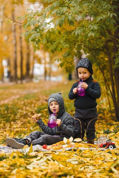 Twee kleine jongens broers zitten op plaid in park en drinken eten zelfgemaakte pizza rode appels Premium Foto