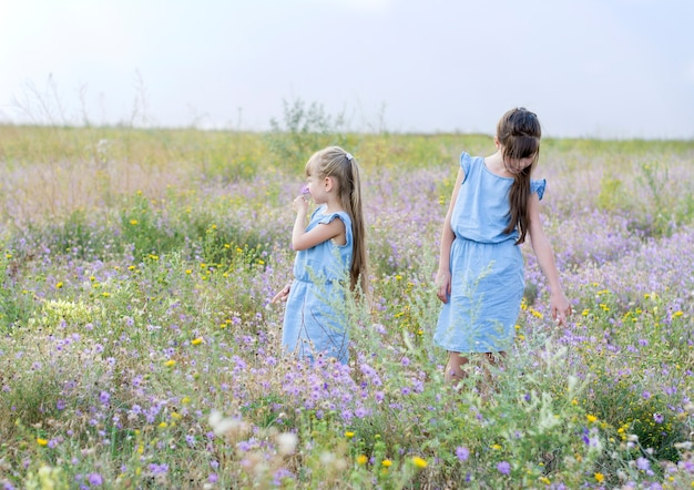 Twee meisjes in identieke blauwe jurken staan op het veld tussen wilde bloemen Premium Foto