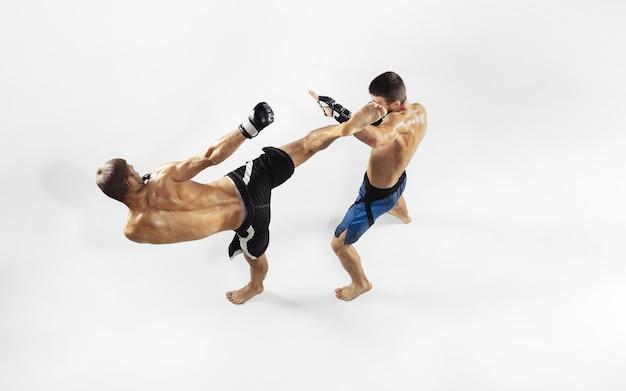 Twee professionele mma-strijders boksen geïsoleerd op witte studio. Gratis Foto