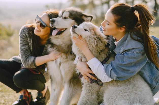 Twee stijlvolle meisjes in een zonnig veld met honden Gratis Foto