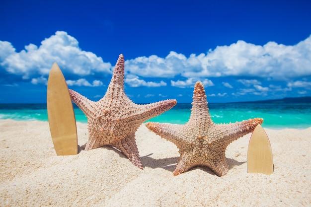 Twee zeesterren surfers op zand van tropisch strand in filippijnen Premium Foto