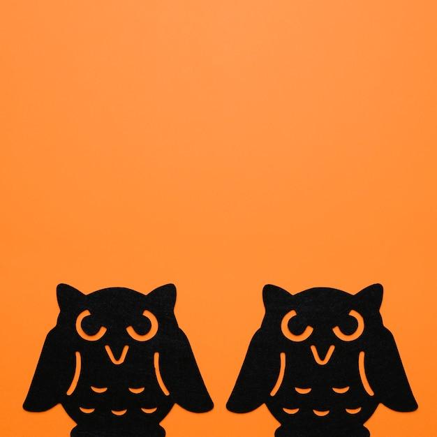 Twee zwarte uilen Gratis Foto