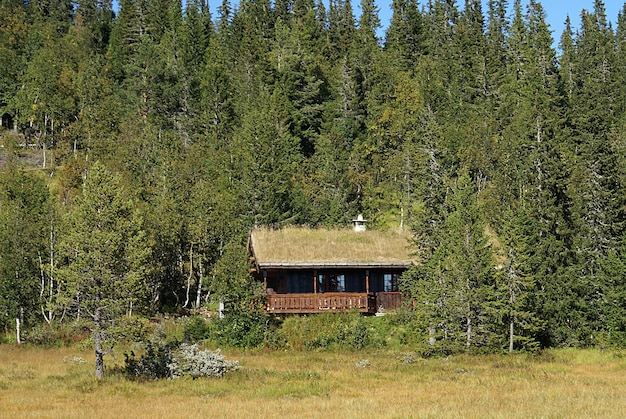 Typisch noors landelijk huisje met adembenemend landschap en prachtig groen in noorwegen Gratis Foto