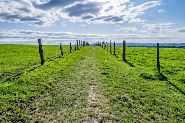 Uitgestrekte groene vallei met overdag een blauwe lucht Gratis Foto
