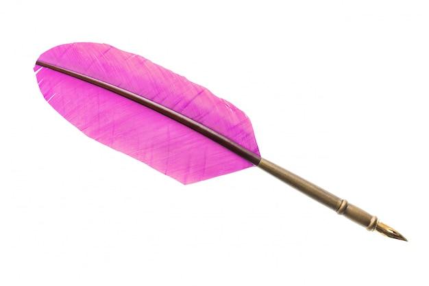 Uitstekende roze dichte omhooggaand van de ganzeveerpen. literatuur concept. Premium Foto