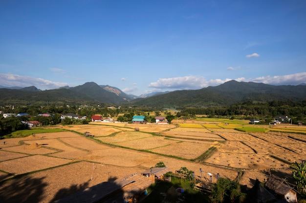 Uitzicht op bergen en rijstvelden na de oogst op blauwe hemel Premium Foto
