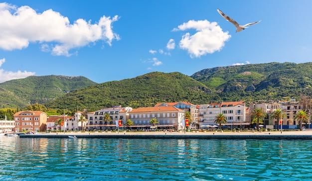 Uitzicht op de kust bij kotor, de adritaic zee, montenegro. Premium Foto
